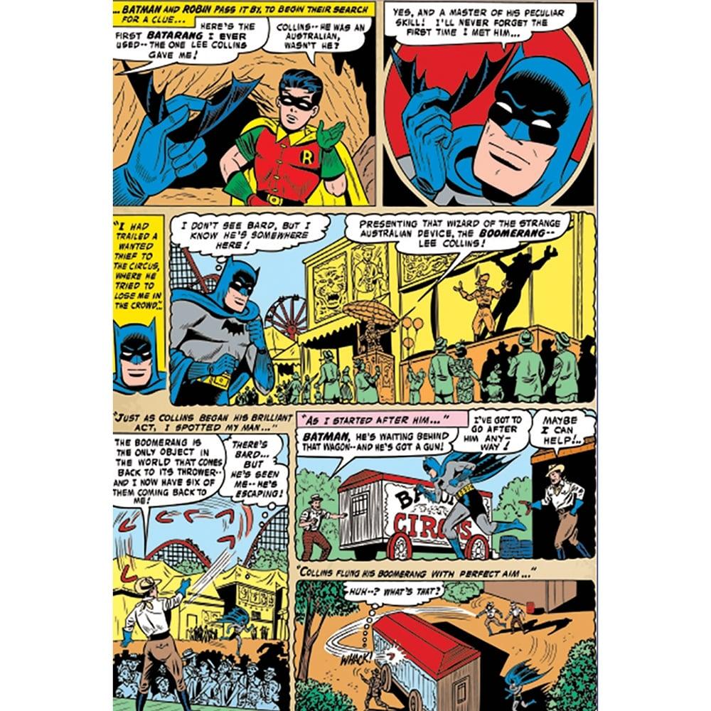 Batman And Robin Comic Strip Feature Wall Wallpaper Mural