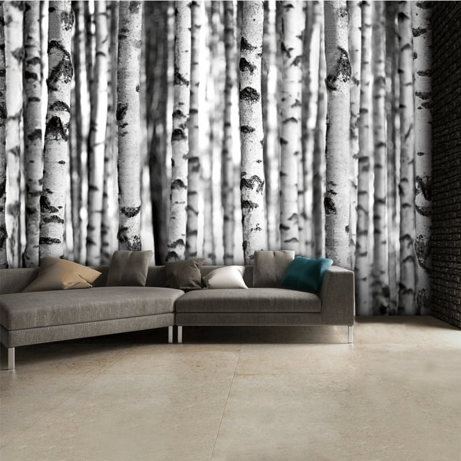 1Wall Black and White Birch Trees Wall Mural | 315cm x 232cm