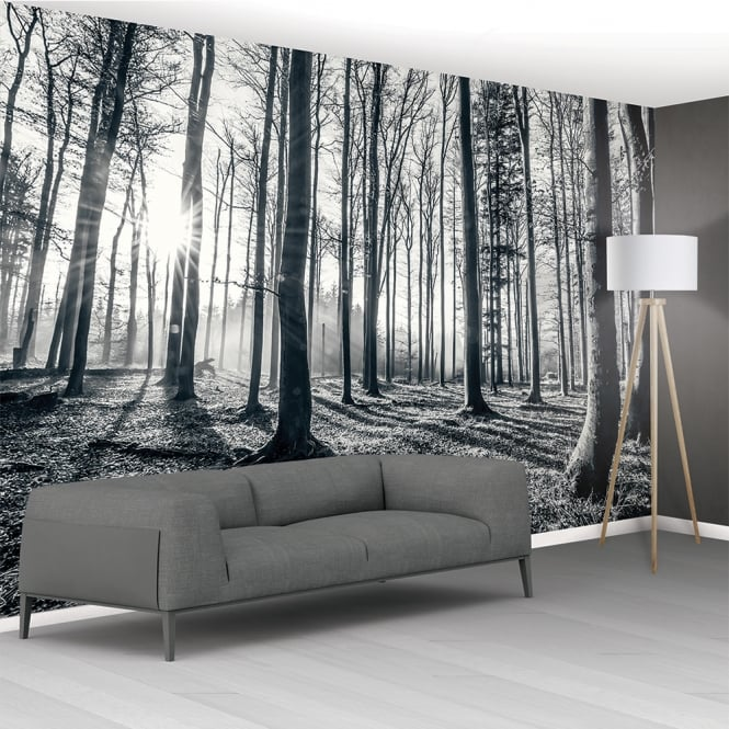 1wall black and white forest trees mural wallpaper 366cm for Black tree mural