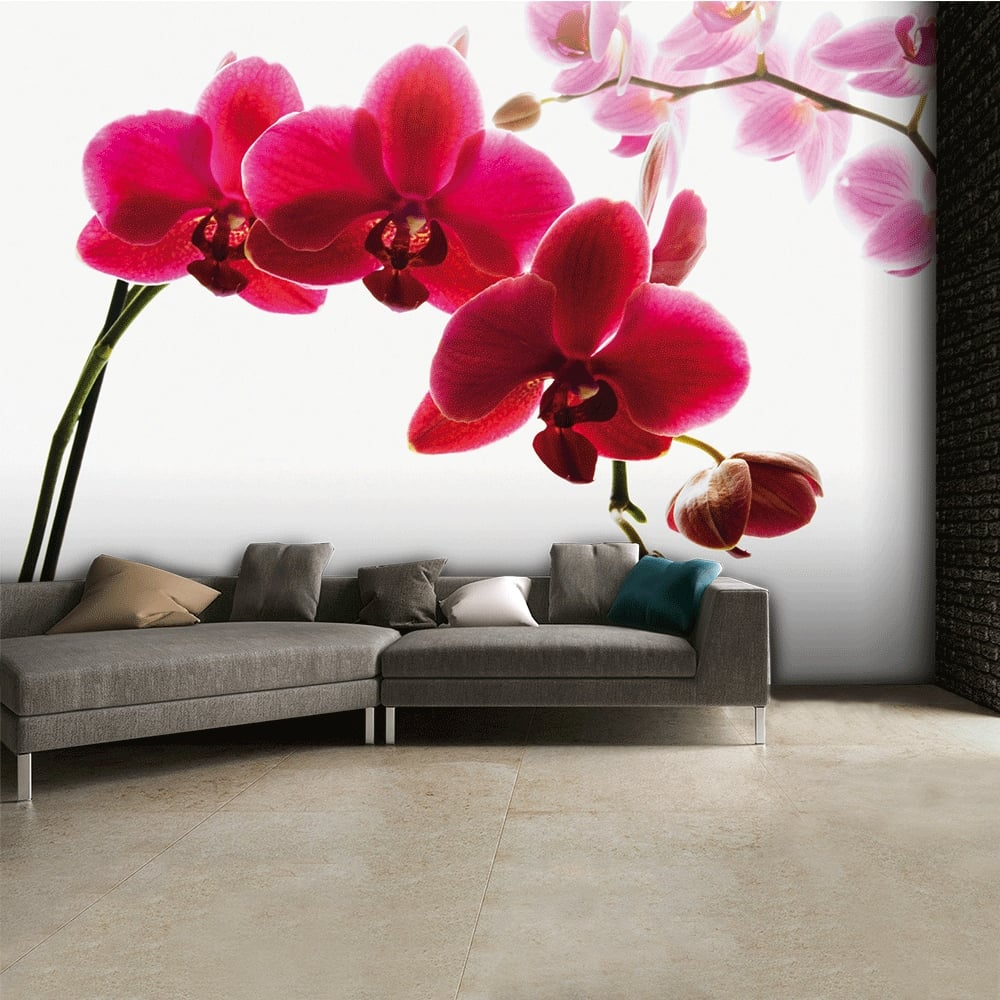 1wall floral pink orchid flower wall mural 315cm x 232cm