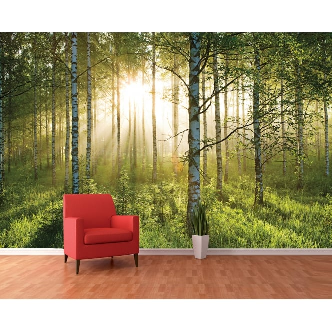 1Wall Green Summer Forest Sunshine Feature Wall Wallpaper Mural | 366cm x 253cm
