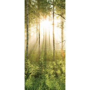 Summer Forest Door Mural 0.95 x 2.1m