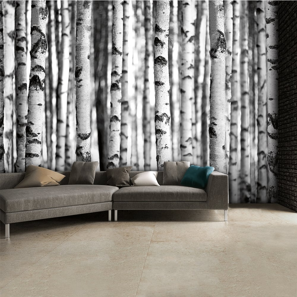 Black and white birch trees wall mural 315cm x 232cm for Black and white tree wallpaper mural