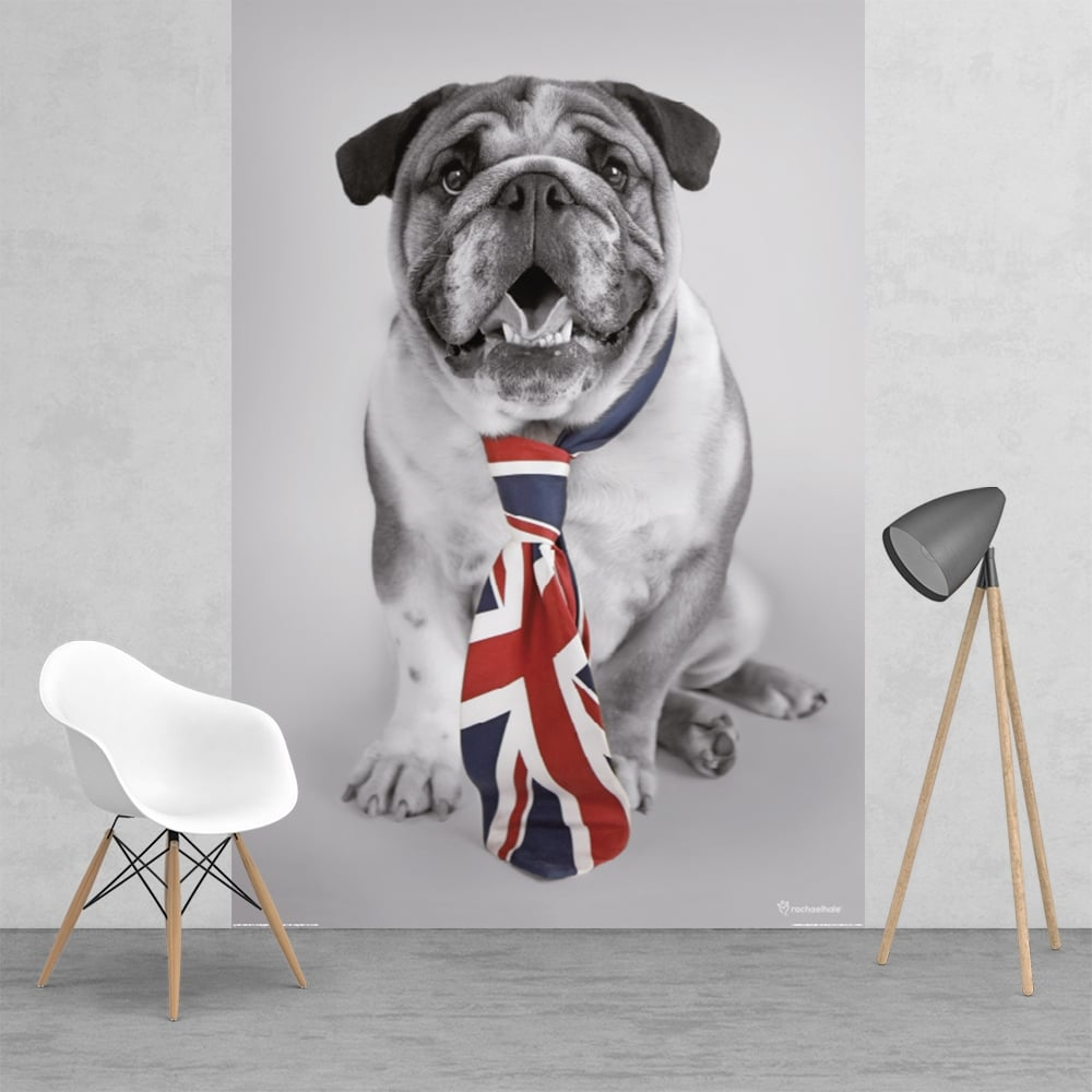 British Bulldog Union Jack Tie Feature Wall Wallpaper Mural 2 Piece Murals    158cm X 232cm