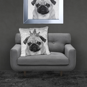 Filled Crushed Velvet Cushion | PUG