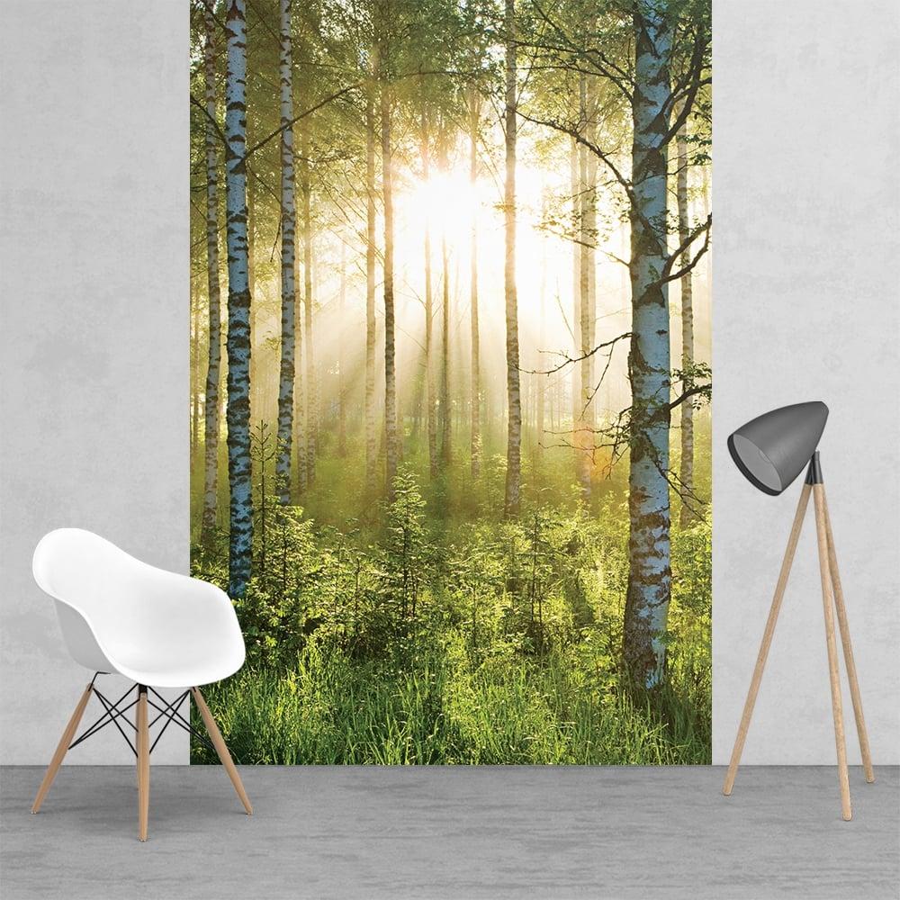 Green summer forest sunshine feature wall wallpaper mural for 1wall forest wallpaper mural
