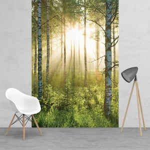 Green Summer Forest Sunshine Feature Wall Wallpaper Mural | 158cm x 232cm