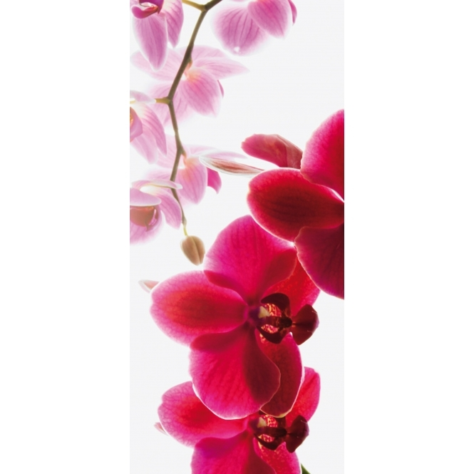 1Wall Orchid Door Mural 0.95 x 2.1m