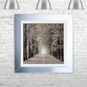 Woodland Path Framed Liquid Artwork and