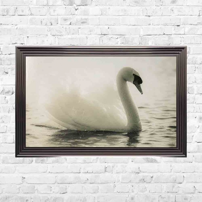 SWAN LAKE FRAMED WALL ART